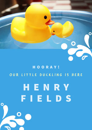 Blue and Yellow Ducks Toy Birth Announcement Birth Announcement