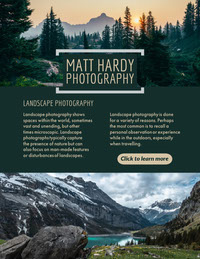 Light, Cold Toned Landscape Photography Newsletter  Newsletter Examples