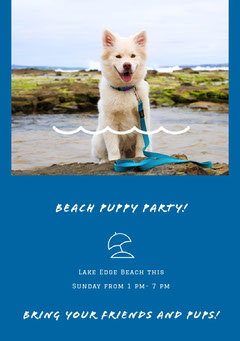BEACH PUPPY PARTY! Dog Flyer
