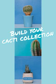 Blue Cacti Collection Pinterest Graphic Cactus