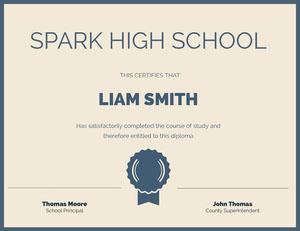 Spark High School