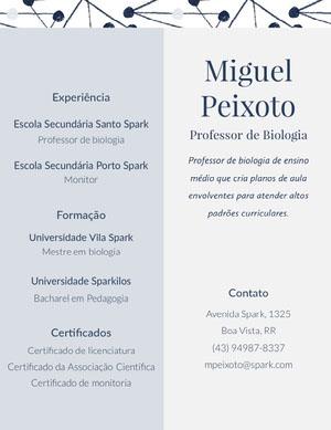 Miguel<BR>Peixoto Currículo