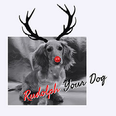 Grey, Black and Red Christmas Dog Portrait Instagram Meme Post Jokes