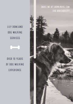 Lily Rowland Dog Walking Services Dog Flyer