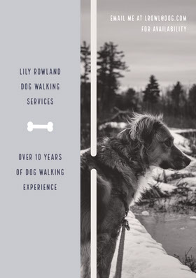 Black and White Dog Walking Services Flyer Flyer