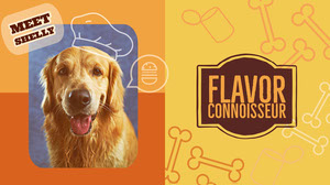 flavor connoisseur  Kit per i media