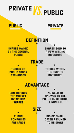 Yellow and Gray Private vs Public Business Infographic Infographic Examples