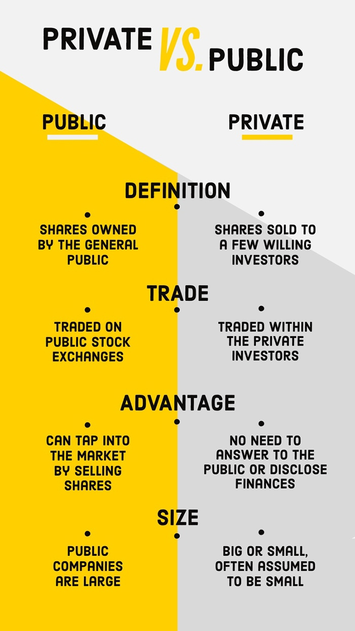 Yellow and Gray Private vs Public Business Infographic Ideias de infográficos