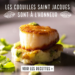 Green And Grey Scallops Instagram Square