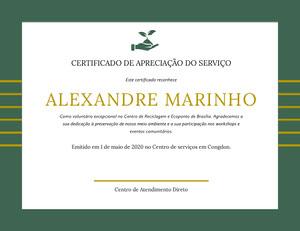ALEXANDRE MARINHO  Diploma