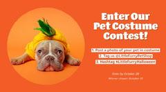 Orange Halloween Pet Costume Photo Contest Facebook Post with Dressed Up Bulldog Contest