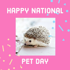 Happy National Animal
