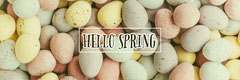 Colorful Eggs Hello Spring Banner Easter