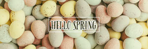 Colorful Eggs Hello Spring Banner Happy Easter Banner