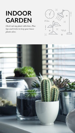 Grey With Green Plants Social Post Cactus