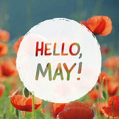Red and Green Hello May Instagram Post Meme Hello