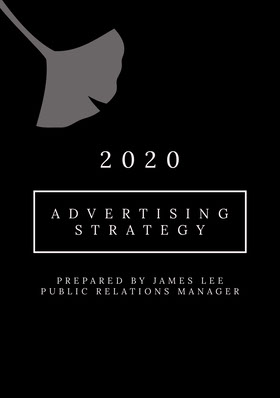 Black and White Advertising Strategy Proposal 提案書