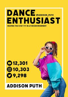 Addison Puth Media Kit A4 Career Poster