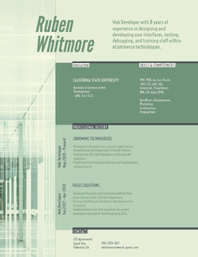 Green and White Web Developer Resume Currículo criativo