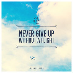 NEVER GIVE UP WITHOUT A FLIGHT  Planes