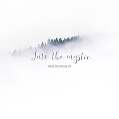 White and Blue Minimalist Album Cover with Forest and Handwriting Font Forest