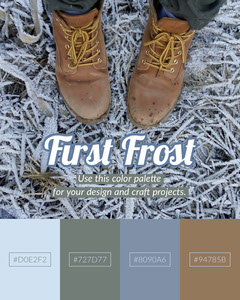 Winter Color Palette Instagram Portrait Graphic with Boots and Frost Shoes