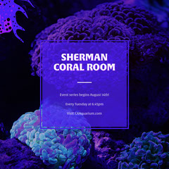 SHERMAN CORAL ROOM Neon