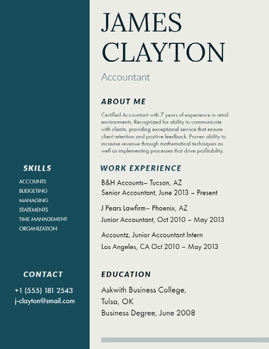 White and Blue Accountant Resume Best Fonts for Your Résumé