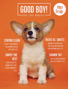 Orange Dog Magazine Cover Pets