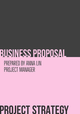 PROJECT STRATEGY Proposal