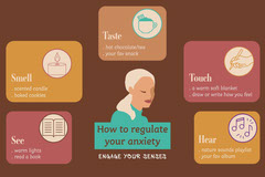 Brown Anxiety Senses Regulate Anxiety Landscape Awareness