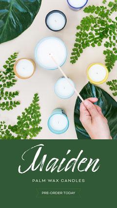 Maiden  Leaf