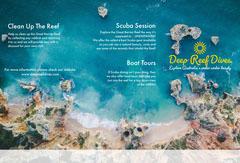 Great Barrier Reef brochure Music Tour