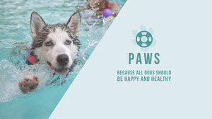 PAWS Pool Party Invitation