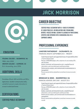 Teal Accountant Resume Professional Resume