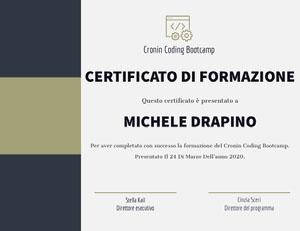 MICHELE DRAPINO Certificato