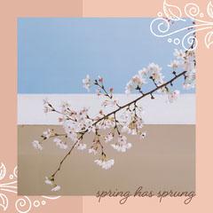 spring has sprung instagram  Sky