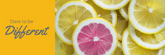 Lemon and Orange Different Banner Fruit