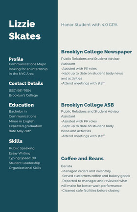 Blue and White Professional Resume CV professionnel
