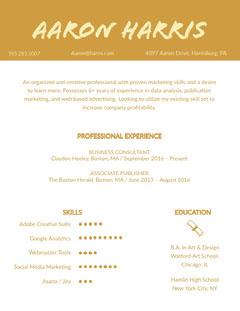 Orange Creative Professional Resume Marketing