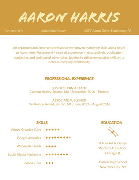 Orange Creative Professional Resume Creative Resume