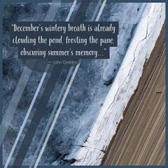 Winter Quote Instagram Square Blue