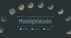 Dark Moonlight Style Twitch Banner Moon