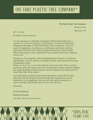 Green Recommendation Letter Carta de recomendación