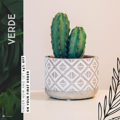 Green Branches Cactus Instagram Square Cactus