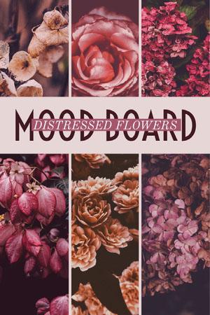 Pink anf Violet Collage Flower Pinterest  Mood board