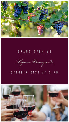 Claret Grand Opening Social Post Grand Opening Flyer