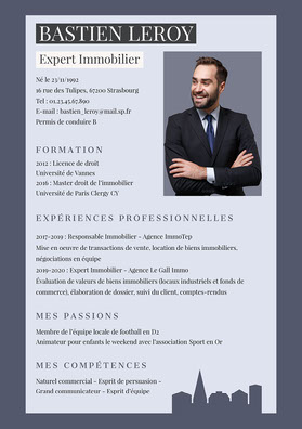 Purple Real Estate Expert Resume   CV professionnel