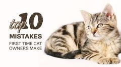 White, Light Toned Cat Owner Guide Blog Header Cat