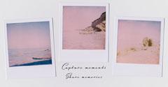Capture Moments Quote Instagram Landscapes Photography